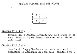 legendes flechisseurs 4